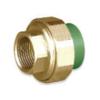 SCG Female Union Brass PPR 20 mm 3/4-inch cheap price