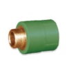 SCG male Straight Brass PPR 40 mm 1 1/4-inch cheap price