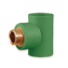 SCG Male Tee Brass PPR 20 mm 1/2-inch cheap price