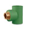SCG Male Tee Brass PPR 25 mm 3/4-inch cheap price