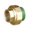 SCG Female Union Brass PPR 40 mm 1 1/4-inch cheap price
