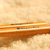 Gingano Shizuku Japanese Rice from Iwatae cheap price