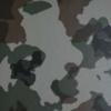 เมทัลชีท เหมือนไม้จริง Fonde Panel FP 25-630 ลายทหาร ราคาถูก