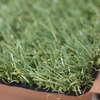 หญ้าเทียม GL1911K 36 มม. ราคาถูก