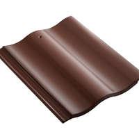 Celica Curve Caramel Brown cheap price