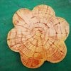 Blue Sea Nature Stamp Concrete Stone A10 cheap price